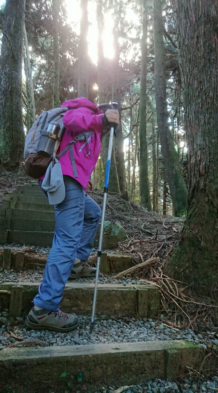 手杖(登山杖)可以作為探測高度的方式,側身下坡,可以使身體更穩定。